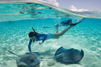 turks and caicos snorkeling with sting rays